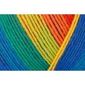 Regia Pairfect Editions 1 2 3 & 4 Socks 4 PLY Knitting Yarn Craft 100g Ball 1736 Edition 1 Neon