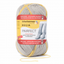Regia Pairfect Editions 1 2 3 & 4 Socks 4 PLY Knitting Yarn Craft 100g Ball 7098 Edition 4 Anthrazit