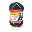 Regia Pairfect Editions 1 2 3 & 4 Socks 4 PLY Knitting Yarn Craft 100g Ball 7114 Edition 1 Waterfall
