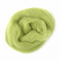 10g 100% Natural Wool Roving Needle Spinning Felting Sewing Craft Fabric Trimits 325 Pistachio