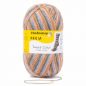 Regia Tweed Colour Socks 4 PLY Knitting Yarn Knit Wool Craft 100g Ball 7490 Frost