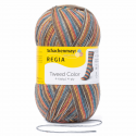 Regia Tweed Colour Socks 4 PLY Knitting Yarn Knit Wool Craft 100g Ball 7491 Zauberwald