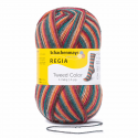 Regia Tweed Colour Socks 4 PLY Knitting Yarn Knit Wool Craft 100g Ball 7493 Herbstlaub