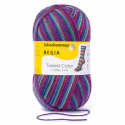 Regia Tweed Colour Socks 4 PLY Knitting Yarn Knit Wool Craft 100g Ball 7495 Winterzauber