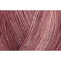 Feige Regia Silk Color 4 PLY Knitting Yarn Knit Wool Craft 100g Ball
