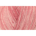 Rosé Regia Silk Color 4 PLY Knitting Yarn Knit Wool Craft 100g Ball