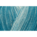 Teal Colour Regia Silk Color 4 PLY Knitting Yarn Knit Wool Craft 100g Ball