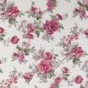 Country Meadow Rose Bush White