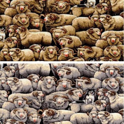 Natural 100% Cotton Patchwork Fabric Nutex Merinos Sheep Farm Life