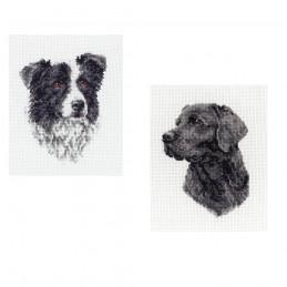Anchor Counted Cross Stitch Kit Black Labrador or Border Collie Dog