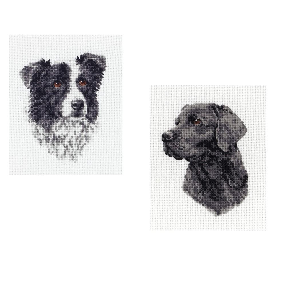 Black Labrador Anchor Counted Cross Stitch Kit Black Labrador or Border Collie Dog